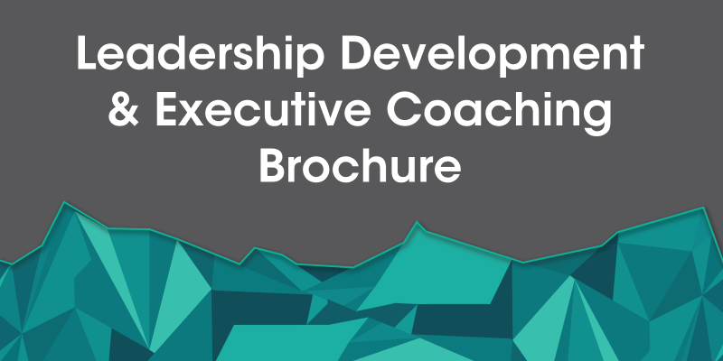 Maximise Your Personal Impact With Leadership Executive Coaching